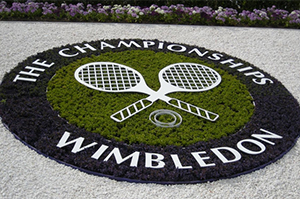 Who will Win the Championships, Wimbledon 2016?