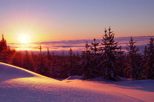 Winter Solstice: The Shortest Day of the Year